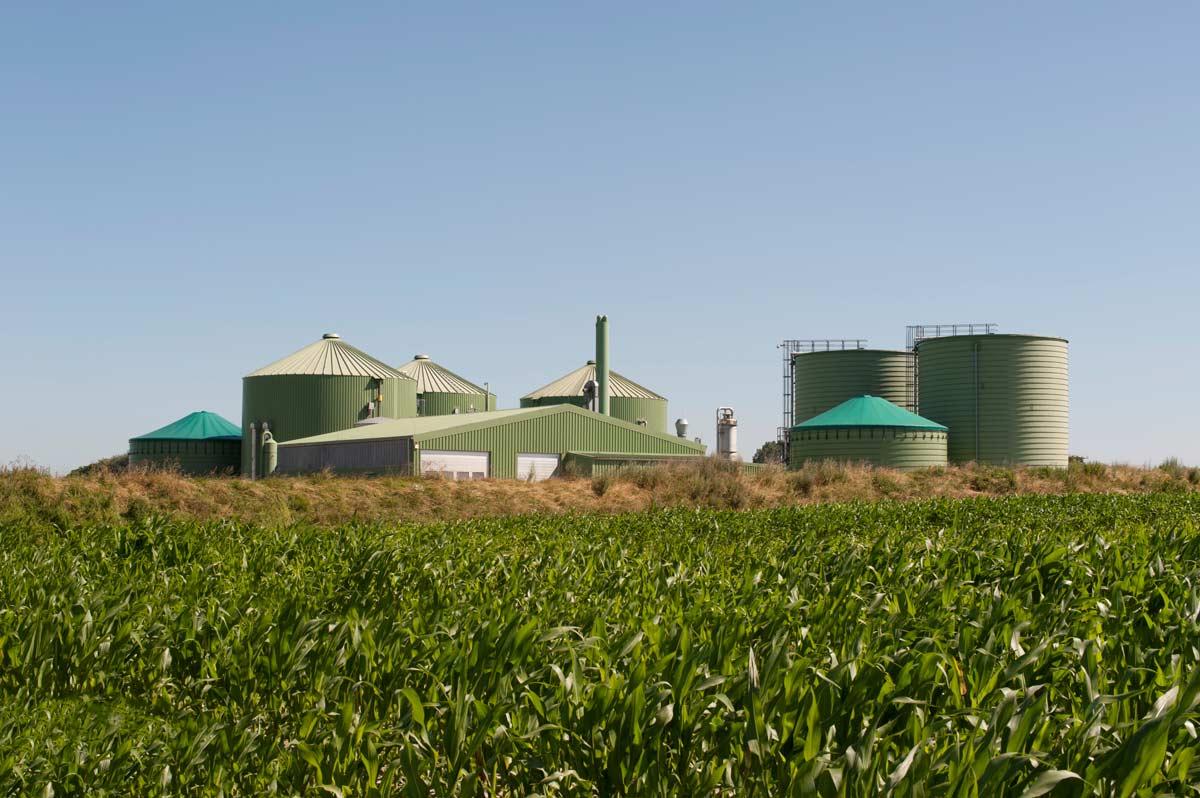 planta-de-biogas